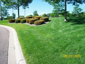 Landscaping Companies Monticello