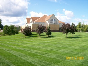 Lawn Care Services Bloomington