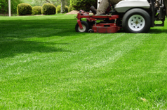 Lawn Care Services Edina