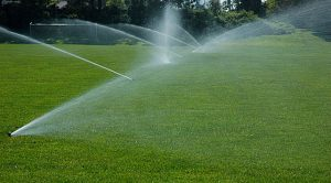 Lawn Irrigation Maple Grove