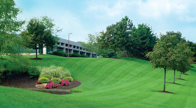 Retaining Walls Twin Cities
