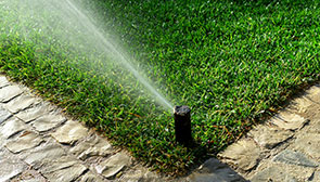 Sprinkler System Installation Buffalo