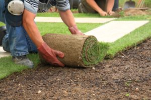 advanced irrigation lawn care services bloomington