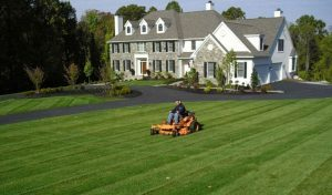 Landscaping Company Watertown