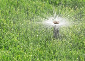 lawn sprinkler systems